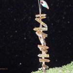 Ночная жизнь Болгарии,  или Санни Бич – самое тусовочное место страны