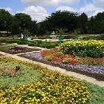 Самостоятельная экскурсия в ботанический сад Балчика (отзыв)