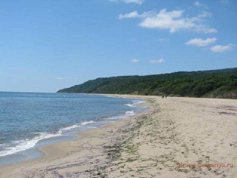 Пляж - курорт Дюны
