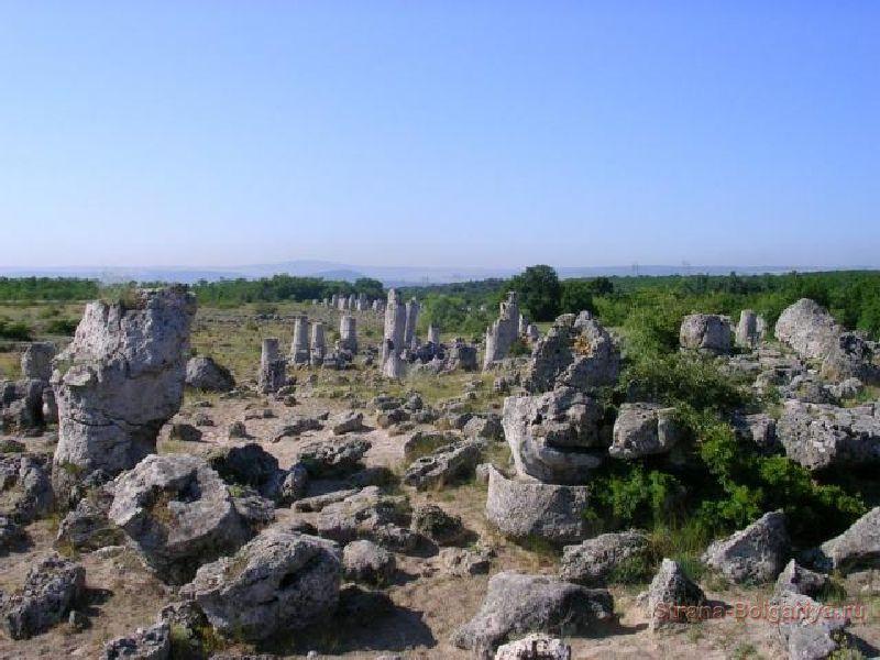 Каменный лес - Побитые камни